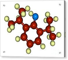 Propofol Diprivan Molecular Model Acrylic Print