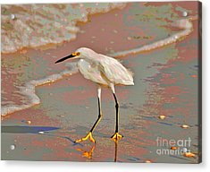 Acrylic Print featuring the photograph 6- Snowy Egret by Joseph Keane
