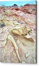 Acrylic Print featuring the photograph Valley Of Fire by Ray Mathis