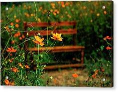 Galsang Flowers In Garden Acrylic Print