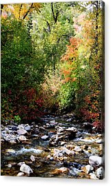 Rocky Mountain Fall Acrylic Print