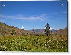 Acrylic Print featuring the photograph Idaho Landscape by Dart Humeston