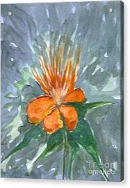 Love Flowers Acrylic Print by Baljitchadha