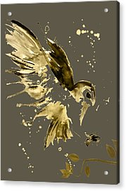 Owl Collection Acrylic Print by Marvin Blaine