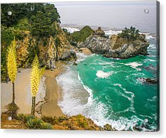 #7842 - Big Sur, California Acrylic Print