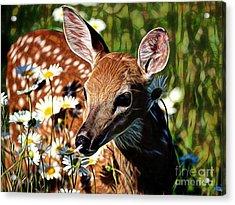 Deer Acrylic Print by Marvin Blaine