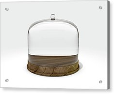 Glass Dome Display Case Acrylic Print