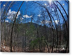 Lake Lure Acrylic Print