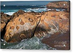 Point Lobos Concretions Acrylic Print