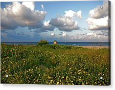 Acrylic Print featuring the photograph 8- Sunflowers In Paradise by Joseph Keane