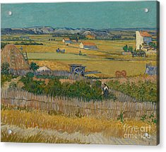 The Harvest Acrylic Print by Vincent Van Gogh