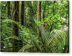 Acrylic Print featuring the photograph Tropical Jungle by Les Cunliffe