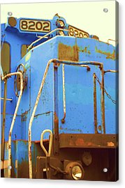 Acrylic Print featuring the photograph 8202 by Susan Carella