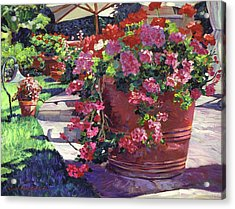 Geranium Color Pot Acrylic Print by David Lloyd Glover