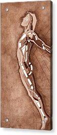 87 - 15 Detail Acrylic Print