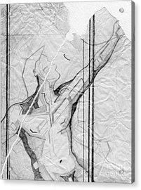 87 - 4 Detail Acrylic Print