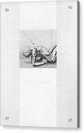 87 - 7 Acrylic Print