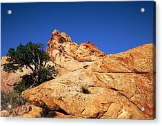 Capitol Reef National Park Acrylic Print by Mark Smith