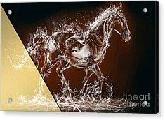 Horse Collection Acrylic Print