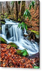 Acrylic Print featuring the photograph Little Laurel Branch by Thomas R Fletcher