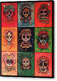 9 Skulls Acrylic Print by Dori Hartley