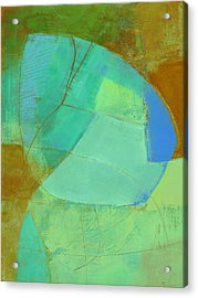 99/100 Acrylic Print by Jane Davies