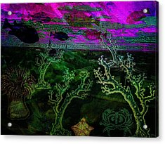 9the Floor - Really ??? Acrylic Print by Mimulux patricia no No