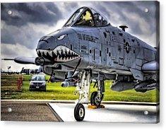 A-10 Thunderbolt  Acrylic Print