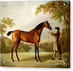 A Bay Racehorse Held By A Groom In An Extensive Landscape Acrylic Print