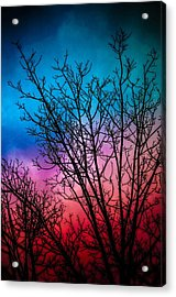 A Beautiful Morning Acrylic Print