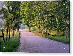 Morning Light Sparks Lane  Acrylic Print by Thomas Schoeller