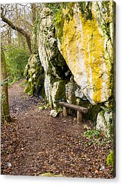 A Bench In The Woods Acrylic Print by Rae Tucker