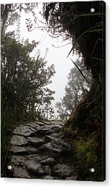 A Bend In The Path Acrylic Print