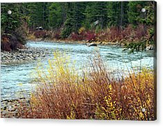 A Bend In The River Acrylic Print by Lynn Bawden