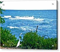 A Bird And The Sea Acrylic Print