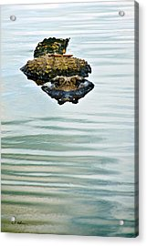 A Bit Of Curiosity Acrylic Print by Christopher Holmes