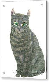 A Black Cat Acrylic Print by Jingfen Hwu