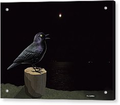 A Blackbird Singing In The Dead Of Night Acrylic Print