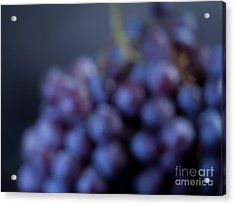 A Blue Bunch Of Grapes Acrylic Print by Patricia Bainter
