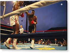 A Boxer Delivers A Punch Acrylic Print by Maria Stenzel