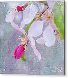 Acrylic Print featuring the photograph A Breath Of Spring by Betty LaRue