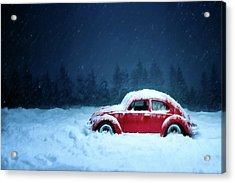 A Bug In The Snow Acrylic Print
