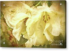 Acrylic Print featuring the photograph A Bunch Of Birthday Wishes by Jean OKeeffe Macro Abundance Art