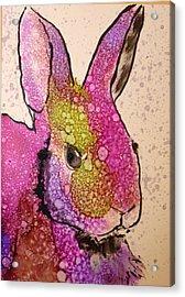 A Bunny Raggitt Acrylic Print