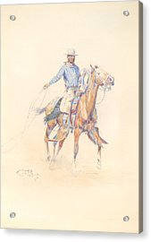 A California Roper Acrylic Print by Celestial Images