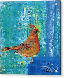 A Cardinal Came By Acrylic Print
