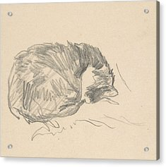 A Cat Curled Up, Sleeping Acrylic Print by Edouard Manet