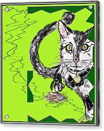 A Cat Acrylic Print by Desline Vitto