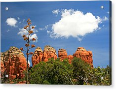 A Century Above Acrylic Print by Miles Stites