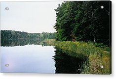 A Clear Day Acrylic Print by Tom Hefko